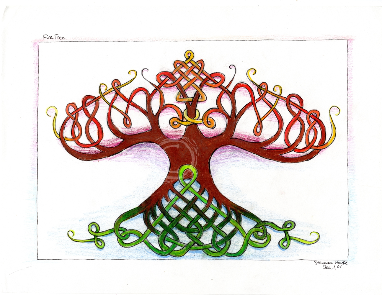 Inspired by the Celtic and Nordic knot art traditions, this drawing depicts a tree with interconnected green roots and intertwining autumn colored branches. Color Pencil and Ink on Paper
