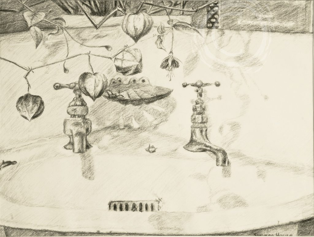Still life charcoal on paper drawing of an antique porcelain corner sink with mismatched handles and house plants.